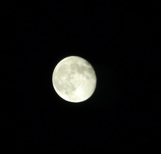 moon20110717-1.jpg