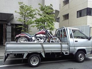 20090513.jpg